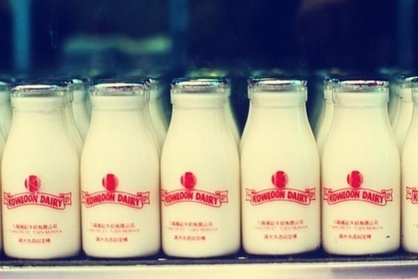 【Maker Faire】DIY簡單3步驟~牛奶變塑膠 - 藝文活動遊記版 ::::Citytalk城市通