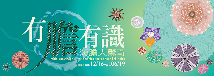 台中科博館「有膽有識」特展|翻轉你對海膽的刻板想望-封面
